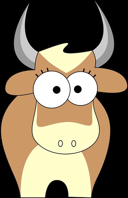 Cow, Bull, Cattle