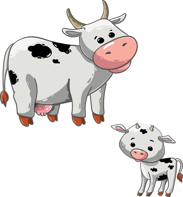 Cow, Calf, Animal, Udder, The Horn Of Africa, Cattle