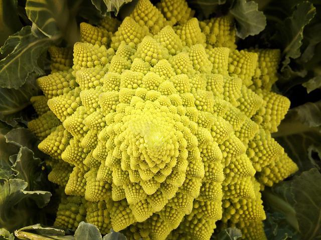 Romanescu, Romanesco, Vegetable, Cauliflower, Fractal