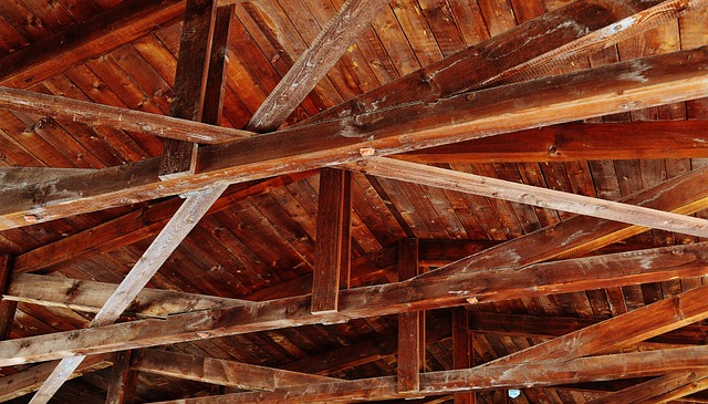Ceiling Construction, Wood, Blanket, Roof Construction