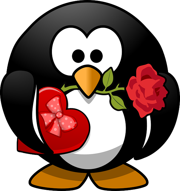 Penguin, Animal, Bird, Celebration, Chocolates, Flower