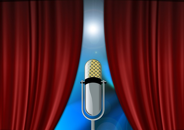 Curtain, Microphone, Event, Celebration, Stage, Meeting