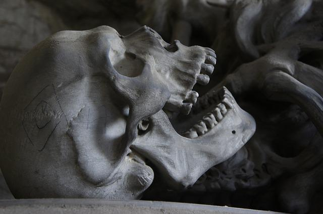 Skull, Cemetery, Genoa, Teeth, Bone, Die, Death