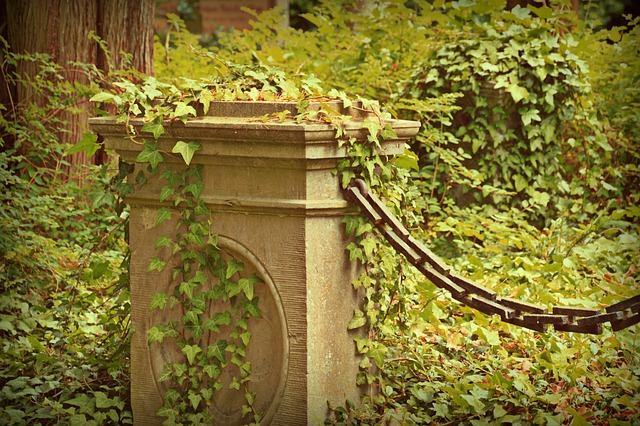 Cemetery, Grave, Old Cemetery, Mystical, Wild