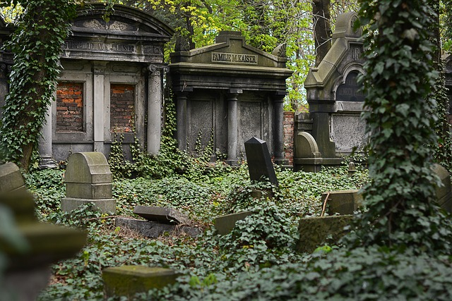 Cemetery, Jewish, Old, Monument, Poland