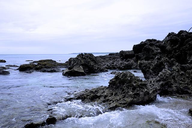 Reef Rock, Taiwan, Butyl 墾, Centre For Youth Begins To