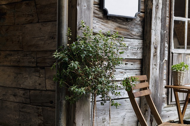 Architecture, Chair, House, Plant, Rustic, Wood, Wooden