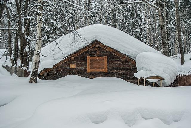 Siberia, Snow, Chalet, Taiga