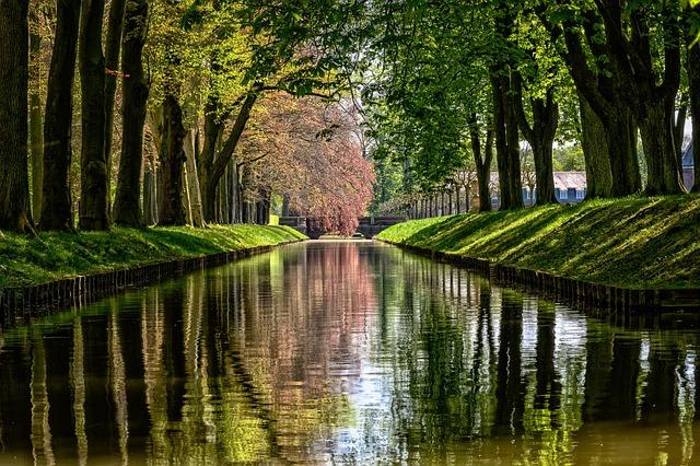 Park, River, Channel, Water, Mirroring, Waterway