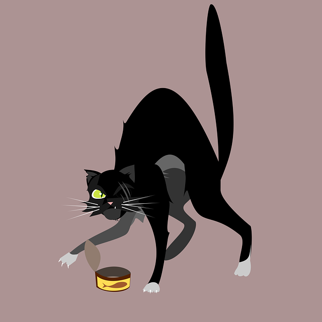 Cat, Character, Street, Street Cat, Thug