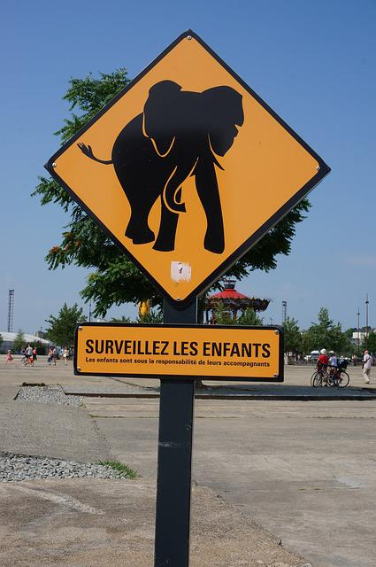 Elephant, Characters, Nantes