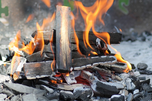 Barbecue, Fire, Charcoal, Flames