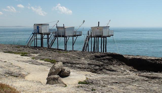 Fishing, Estuary, Coastline, Charente-maritime