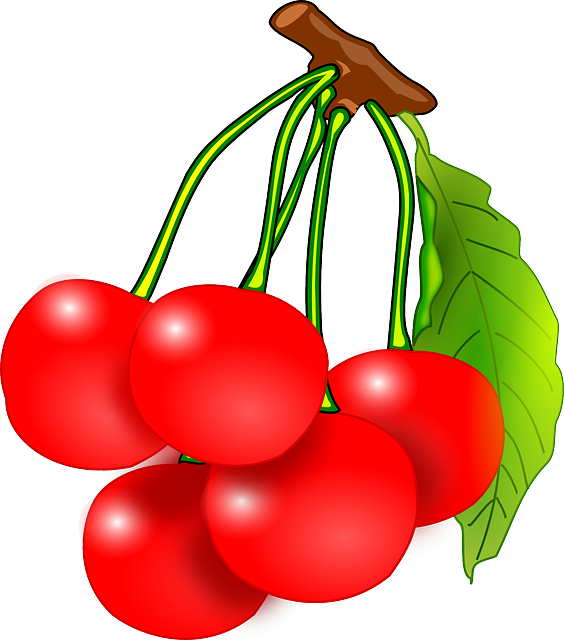 Cherries, Fruits, Red, Vitamins, Juicy, Healthy, Garden