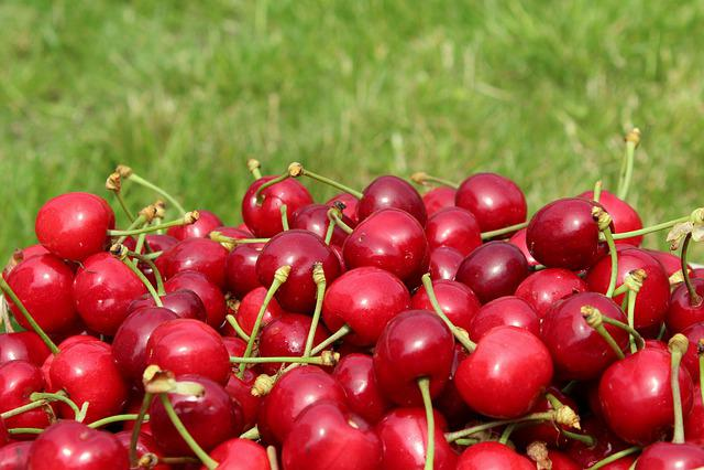 Cherries, Mature, Season, The Gap, Fruit, Vitamins