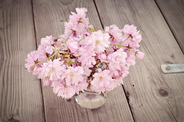 Cherry Blossoms, Cherry Blossom Branch, Flowers, Pink