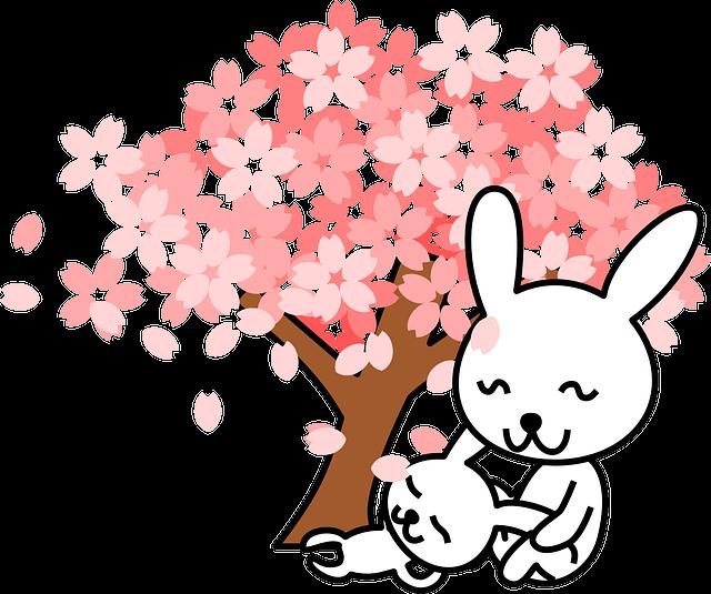 Rabbits, Bunnies, Animal, Cute, Tree, Cherry Tree