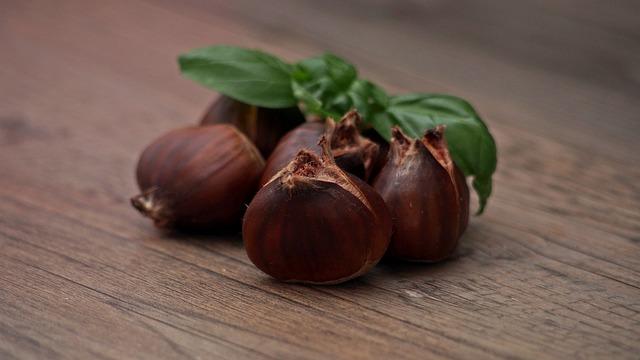 Chestnut, Brown, Food, Nutrition, Edible, Fruit, Plant