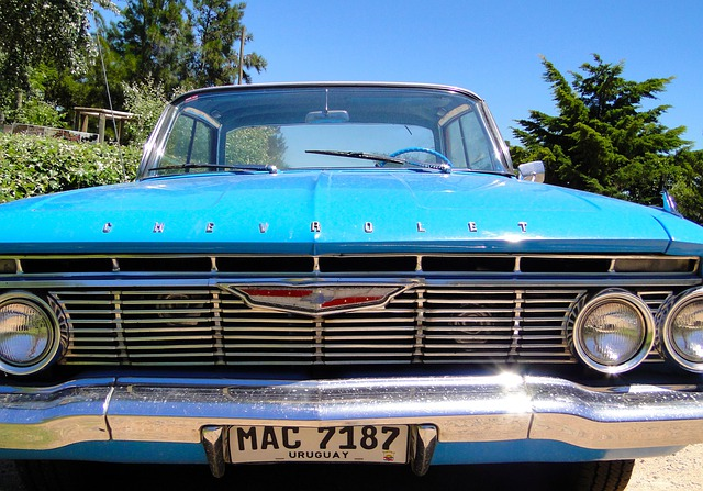 Chevy, 60 Years, Palm Tree, Headlights, Montevideo