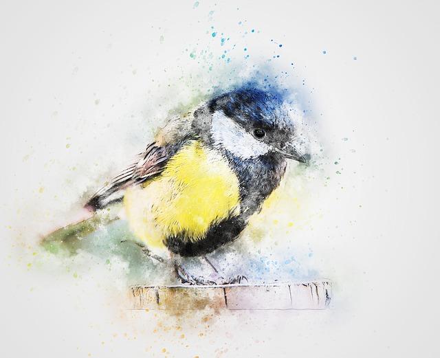 Bird, Color Feathers, Chickadee Art, Abstract