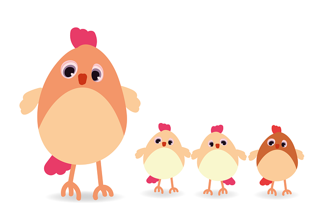 Hen, Chicken, Poultry, Livestock, Outdoor, Feather