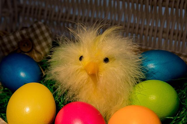 Easter, Easter Eggs, Colorful, Chicks