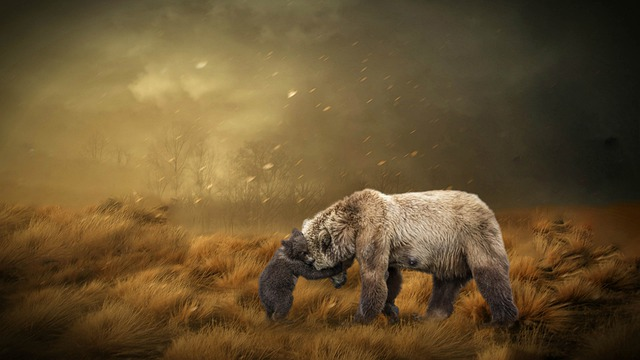 Fantasy, Nature, Bear, Mother, Child, Composing