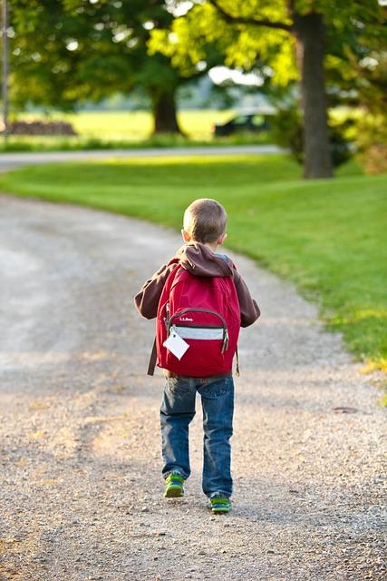 School, Backpack, Childhood, Education, Bag, Elementary