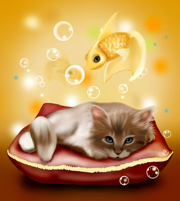 Kitten, Fish, Background, Illustrations, Children