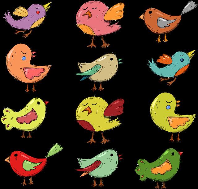 Bird, Kids, Branch, Children, Environment, Green