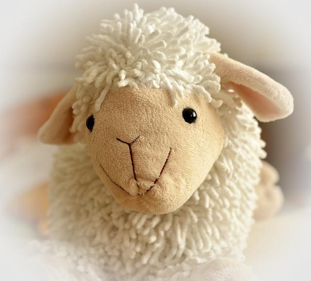 Teddy Bear, Sheep, Soft, Cuddly, Cute, Children Toys
