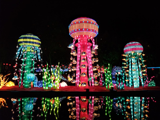 Chinese New Year, Night, Lantern Festival, Fish