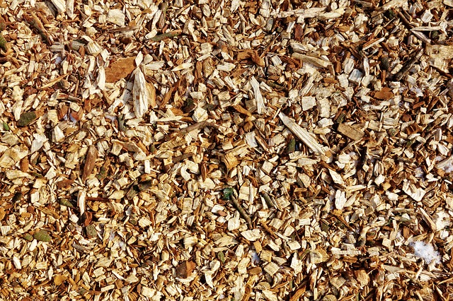 Wood Chips, Chips, Material, Pathway