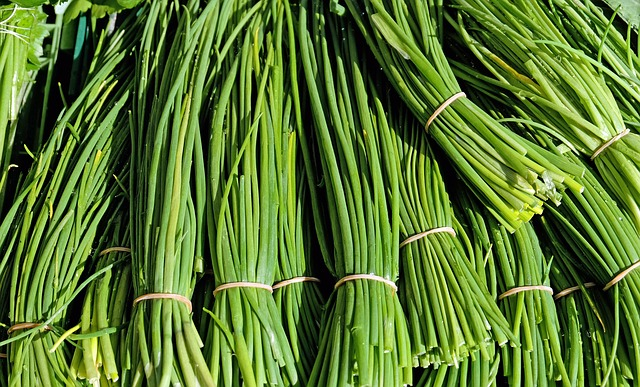 Chives, Herbs, Culinary Herbs, Plant, Nature