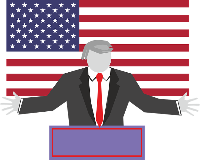 Donald Trump, Trump, Usa, Choice, America, Patriotism