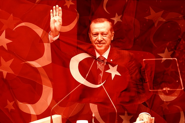 Erdogan, Choice, Vote, Turkey, Demokratie, Politician