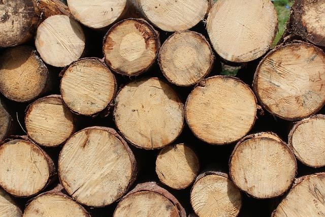 Chopped Wood, Firewoods, Logs, Lumber, Wooden