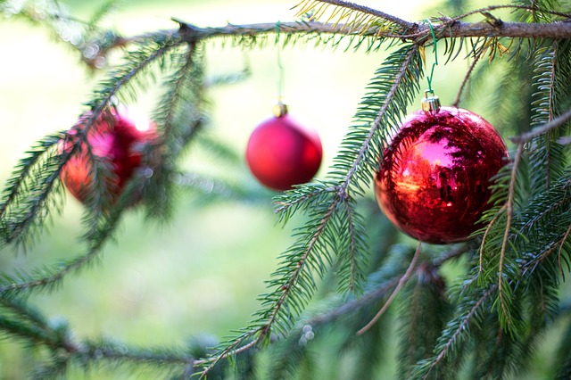 Christmas Bulbs, Red, Pine Tree, Christmas, Decoration