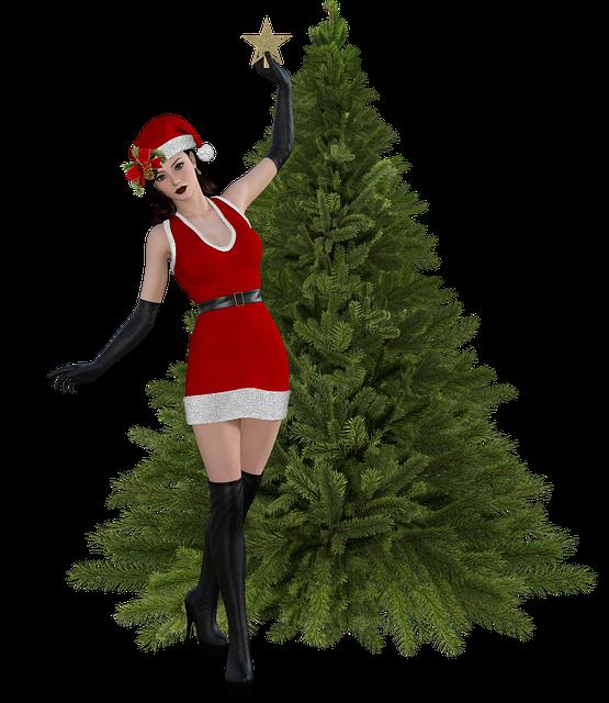 Christmas, Female, Cap, Santa Claus, Trim, San Nicolas