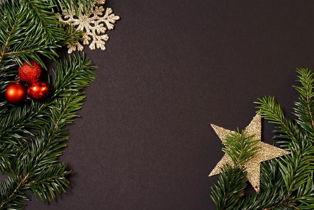 Holidays, Christmas Tree, Christmas