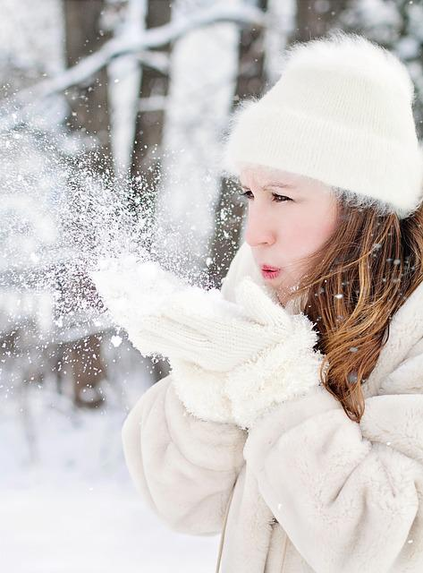 Winter, Snow, Cold, Christmas, Frost