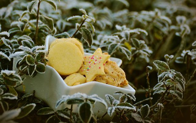 Frost, Winter, Christmas Cookies, Pastries, Cookie