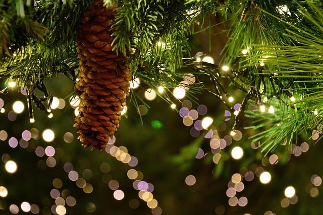 Christmas Garland, Christmas Motif, Lights, Shining