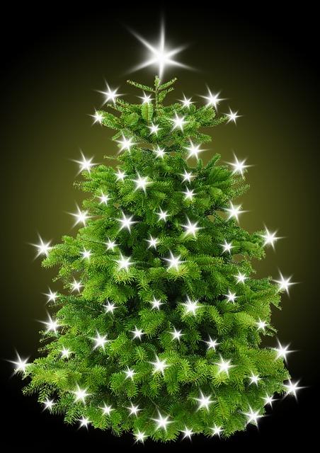 Christmas, Christmas Tree, Tree, Star, Lighting, Light