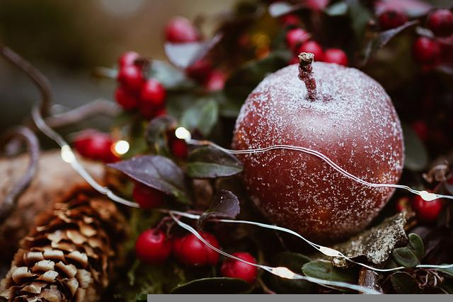 Christmas, Ornaments, Frost, Christmas Lights, Winter