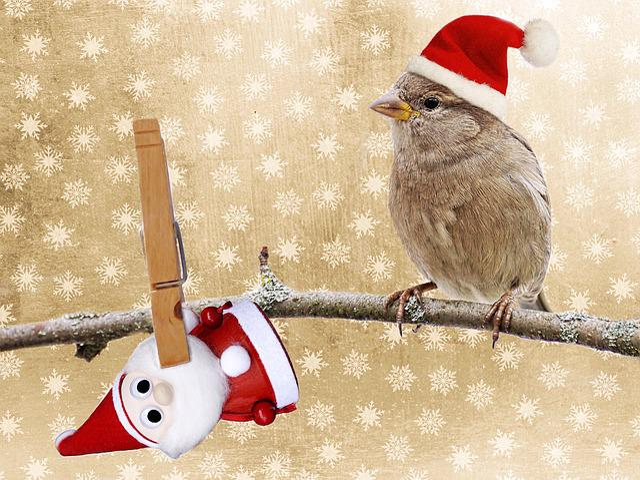 Christmas, Christmas Motif, Greeting Card