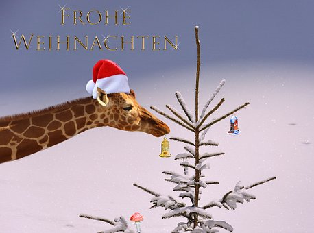 Christmas Card, Tree, Jewellery, Christmas Motif