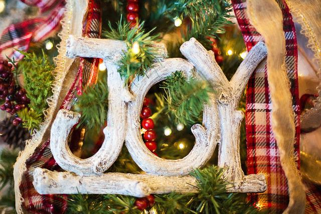 Joy, Christmas Ornament, Christmas, Tree, Holiday