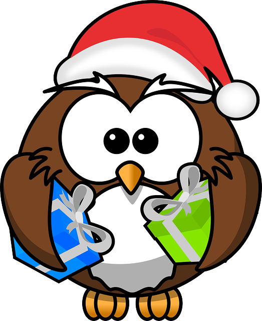Owl, Santa, Animal, Bird, Christmas, Funny, Gift