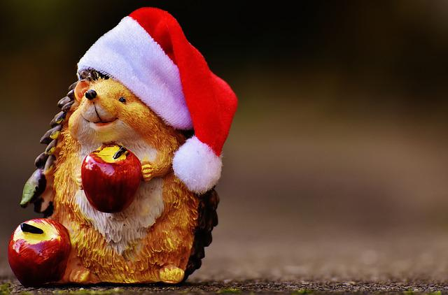 Hedgehog, Fig, Christmas, Santa Hat, Decoration, Funny